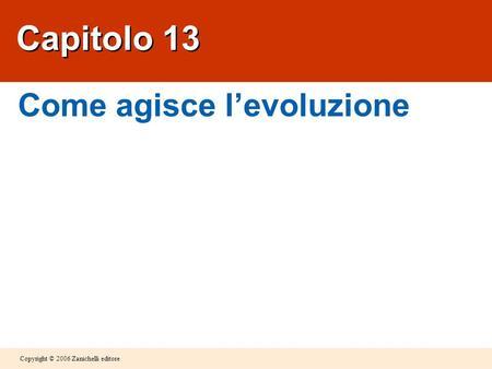 Copyright © 2006 Zanichelli editore Capitolo 13 Come agisce levoluzione.