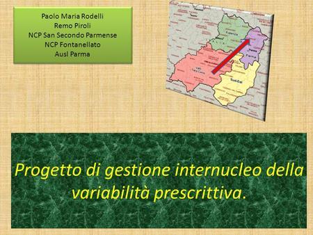 Progetto di gestione internucleo della variabilità prescrittiva. Paolo Maria Rodelli Remo Piroli NCP San Secondo Parmense NCP Fontanellato Ausl Parma Paolo.
