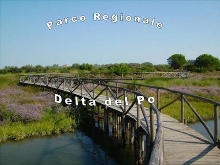 Tragitto Dolo – Albarella Albarella - Porto Caleri.