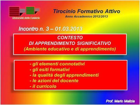 Tirocinio Formativo Attivo Anno Accademico 2012/2013 - gli elementi connotativi - gli esiti formativi - la qualità degli apprendimenti - le azioni del.