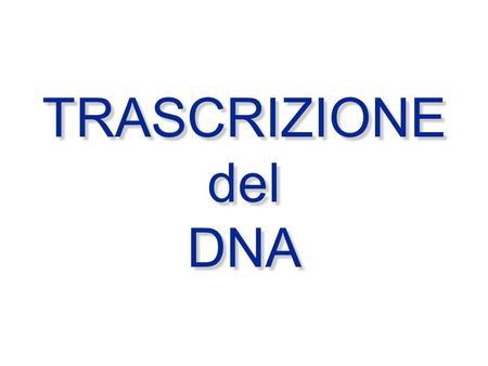 TRASCRIZIONE del DNA TRASCRIZIONE del DNA. DNA ---> RNA ---> Proteina TRASCRIZIONE TRADUZIONE.
