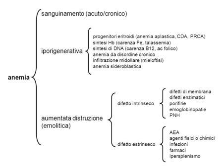 Anemia sanguinamento (acuto/cronico) iporigenerativa aumentata distruzione (emolitica) progenitori eritroidi (anemia aplastica, CDA, PRCA) sintesi Hb (carenza.