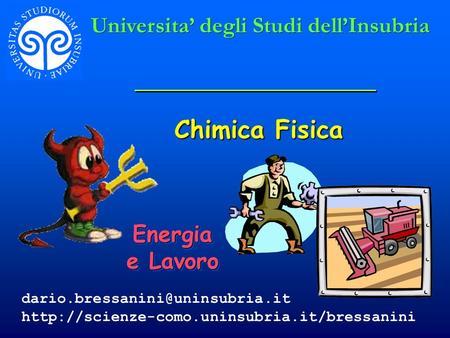 Chimica Fisica Universita' degli Studi dell'Insubria Energia e Lavoro