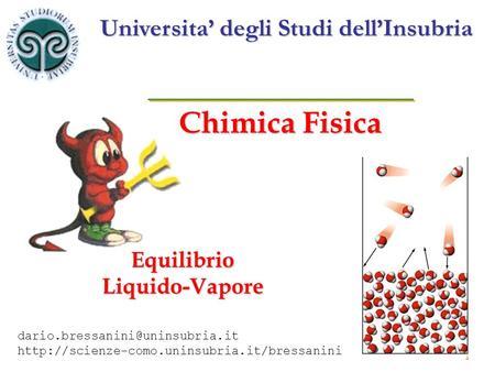 1 Chimica Fisica Equilibrio Liquido-Vapore Universita degli Studi dellInsubria