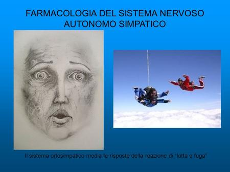 FARMACOLOGIA DEL SISTEMA NERVOSO AUTONOMO SIMPATICO Il sistema ortosimpatico media le risposte della reazione di lotta e fuga.