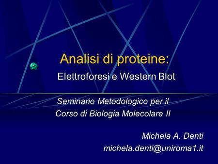 Analisi di proteine: Elettroforesi e Western Blot Seminario Metodologico per il Corso di Biologia Molecolare II Michela A. Denti