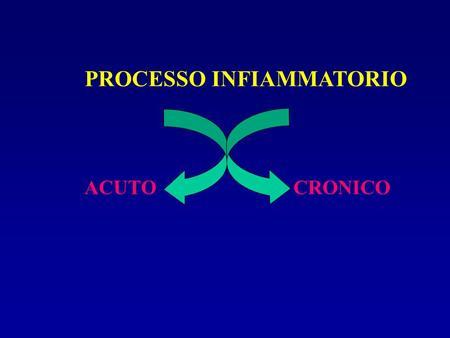 PROCESSO INFIAMMATORIO ACUTOCRONICO. PROCESSO INFIAMMATORIO ACUTO CRONICO Intervento farmacologico.
