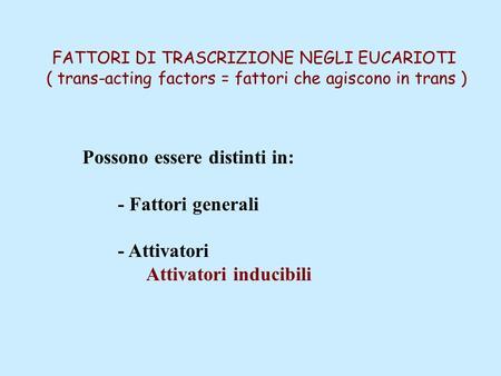 FATTORI DI TRASCRIZIONE NEGLI EUCARIOTI ( trans-acting factors = fattori che agiscono in trans ) Possono essere distinti in: - Fattori generali - Attivatori.