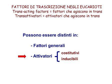FATTORI DI TRASCRIZIONE NEGLI EUCARIOTI Trans-acting factors = fattori che agiscono in trans Transattivatori = attivatori che agiscono in trans Possono.