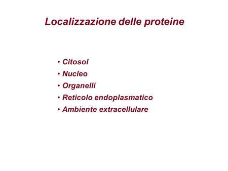 Localizzazione delle proteine Citosol Nucleo Organelli Reticolo endoplasmatico Ambiente extracellulare.