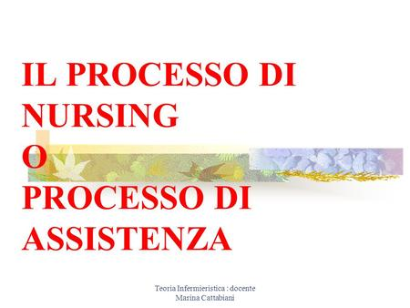 Teoria Infermieristica : docente Marina Cattabiani IL PROCESSO DI NURSING O PROCESSO DI ASSISTENZA.