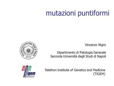 Mutazioni puntiformi Vincenzo Nigro Dipartimento di Patologia Generale Seconda Università degli Studi di Napoli Telethon Institute of Genetics and Medicine.