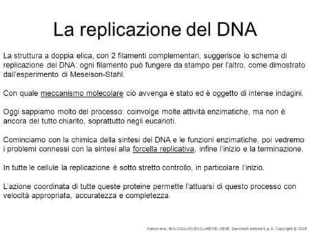 Watson et al., BIOLOGIA MOLECOLARE DEL GENE, Zanichelli editore S.p.A. Copyright © 2005 La replicazione del DNA La struttura a doppia elica, con 2 filamenti.
