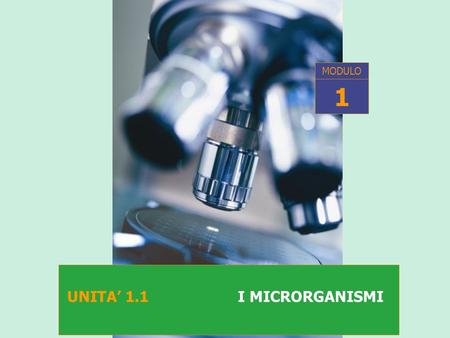 MODULO 1 UNITA' 1.1 I MICRORGANISMI.